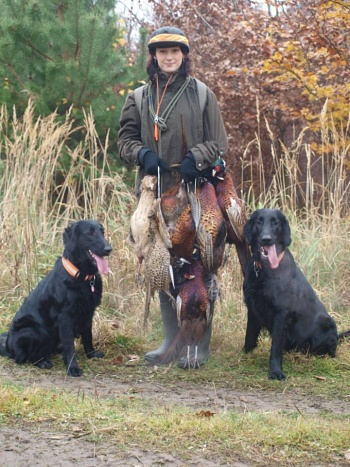 Hunting Flat Coated Retriever Oasis of Peace